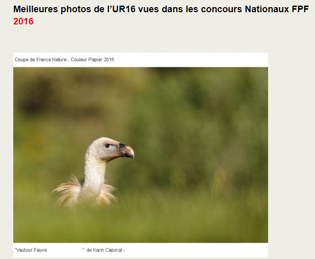 Photo primée coupe de France nature 2016