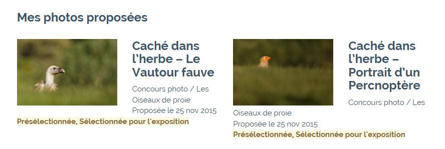 photos sélctionnées par le festival de l'oiseau en 2016