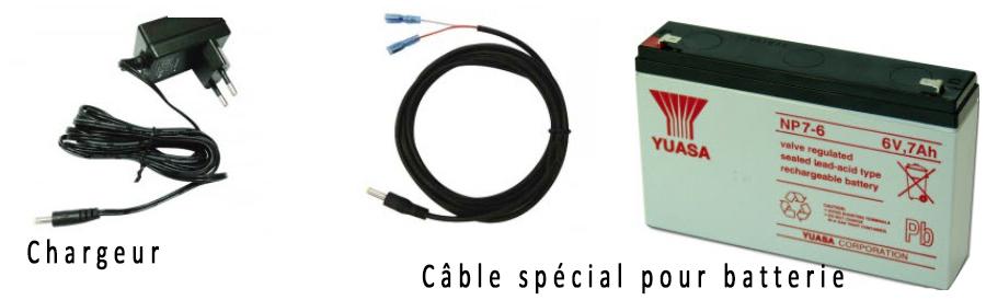 Batterie externe+ câble