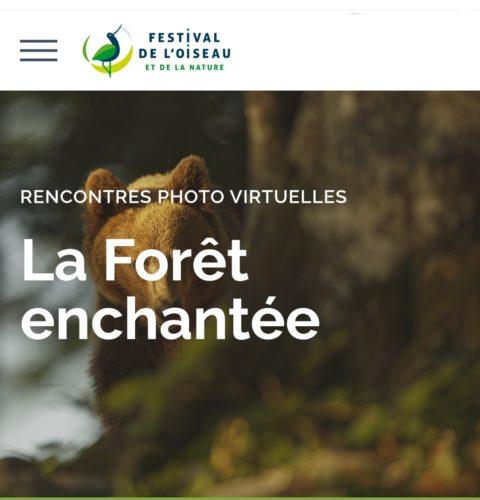 Expo Festival de l'oiseau 2021