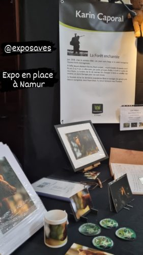 expo Cathédrale de Namur