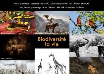 3 photos sélectionnées au Festiphoto de Rambouillet