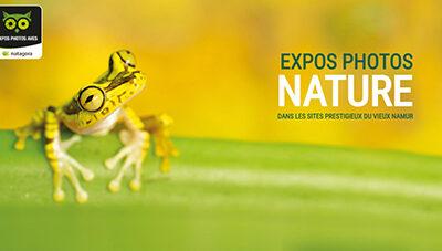 Exposition à AVES Namur en Belgique – septembre 2021